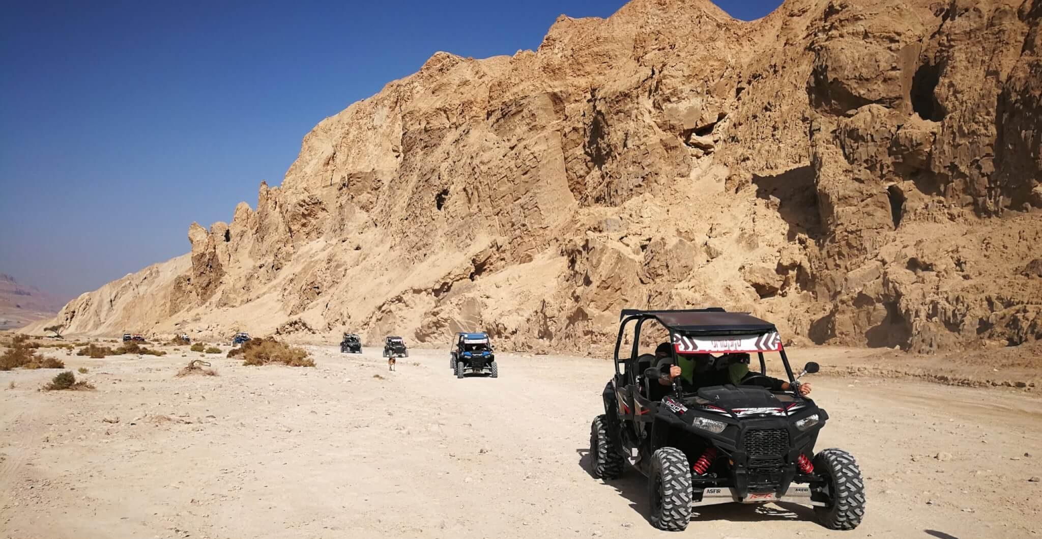 רייזרים במדבר