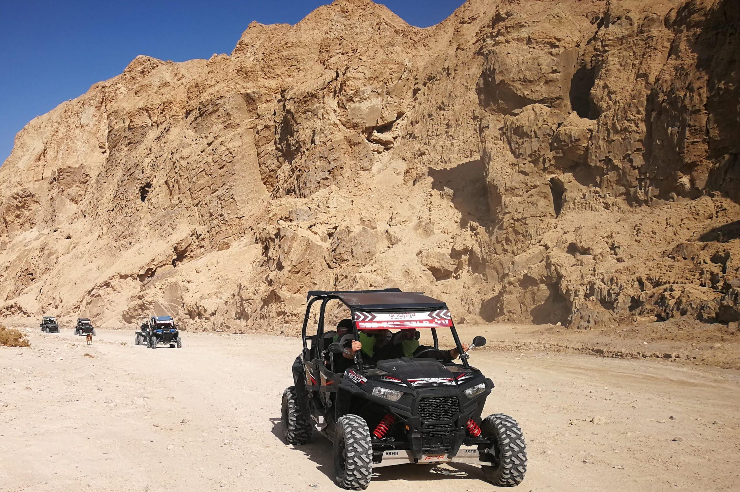 rzr in the desert